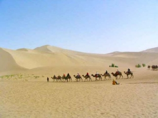 Camels Taking Tourists To the Mingsha Mountain and Crescent Spring From Dunhuang