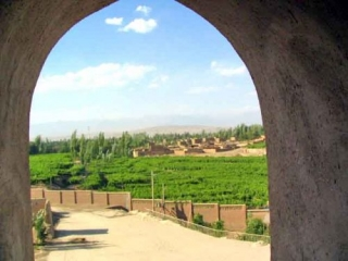Vineyards Viewed From the Emin Mosque In Turpan